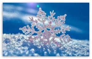 snowflake_2-t2